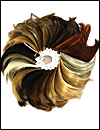 Rent or Purchase an Envy Wig Color Ring
