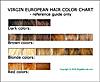 Virgin European Remy Hair Color Chart