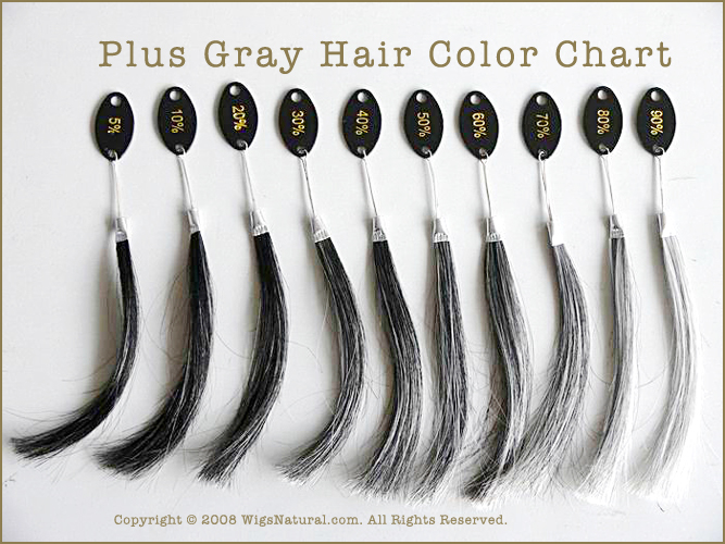 Plus Gray Hair Color Chart