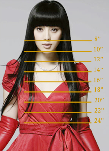 Hair Length on Real Person Chart