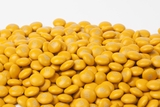 Gold Milk Chocolate M&M's Candy (10 Pound Case)