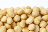 Roasted Whole Macadamias (1 Pound Bag)