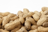 Unsalted In-Shell Peanuts (10 Pound Case)