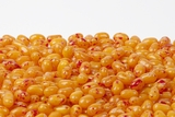 Peach Jelly Belly (10 Pound Case)