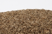 Caraway Seeds (25 Pound Case)