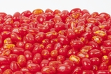 Sizzling Cinnamon Jelly Beans (1 Pound Bag)