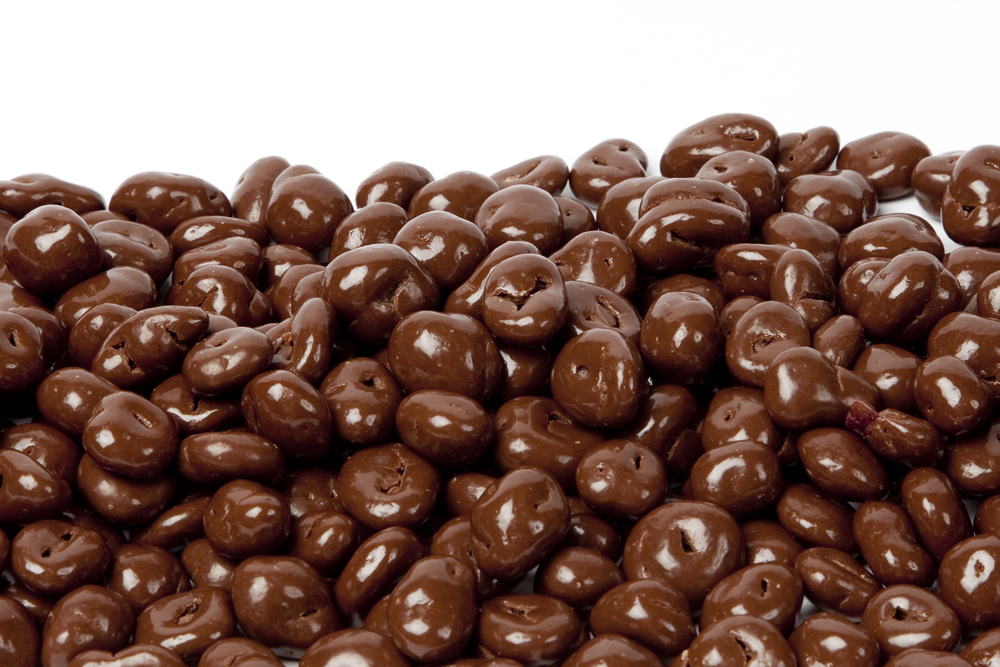 Image result for chocolate covered raisins by the pound