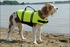 Safety Neon Yellow Doggy Life Jacket 15-20LB 'S' (MFG#1300)