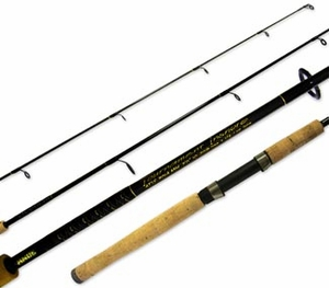 Ande Spinning Rod's