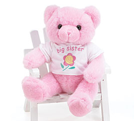 Big Sister Pink Plush Bear w/tee