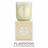 Blanc Voluspa Candle | Pink Citron
