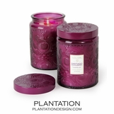 Japonica Voluspa Candle | Santiago Huckleberry