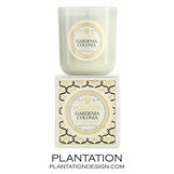 Blanc Voluspa Candle | Gardenia Colonia