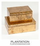 Yen Leafed Boxes | Gold
