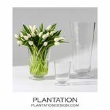 Bloomfield Vases | Clear Glass