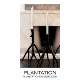 Whitetail Candlesticks Set | Bronze