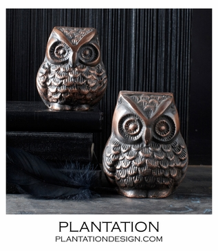 Tree Owl Paperweights Set