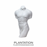 Nude Male Torso No. 1 | Matte