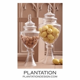 Apothecary Jars Set | Fluted