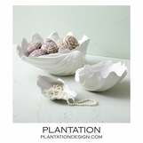 Clam Shell Bowls Set