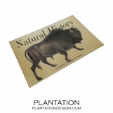Bison Decoupage Tray