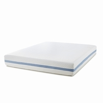 Queen Mattresses by Picket House Furnishings