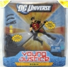 DC Universe Young Justice Robin Deluxe Figure