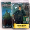 NECA Harry Potter and the Order of the Phoenix Wholesale Solid Case