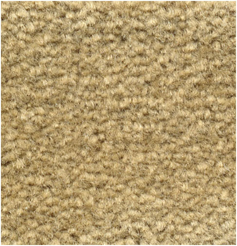 EMPHATIC II COLOR: 56243 HONEYWHEAT