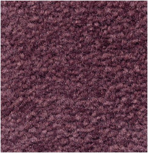 EMPHATIC II COLOR: 56995 PERFECT PLUM