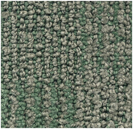 COMPLEXITY COLOR: 8655 NEW AGE GREEN