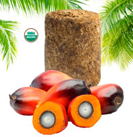 Organic Red Palm Fruit Oil