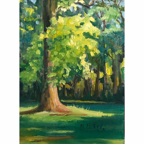 Late Light and Leaves - SOLD !