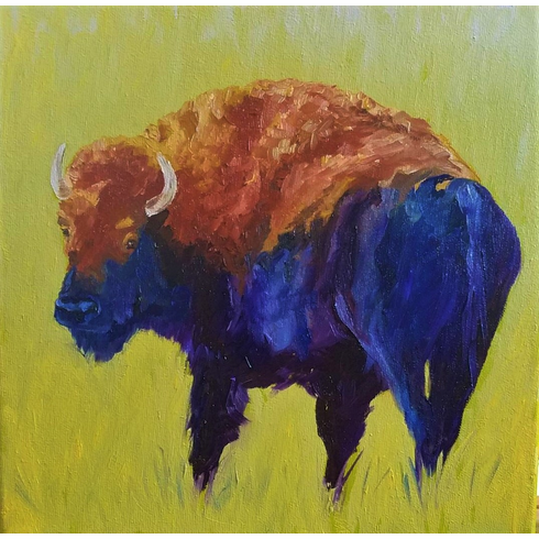 Young Bull (Bison)