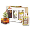 Diffuser Set Fresh Fig-sold out