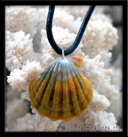 Multi Color Green Yellow Sunrise Shell & Black Leather Cord Necklace