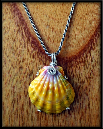 Large Yellow Pink White Sunrise Shell Silver Necklace