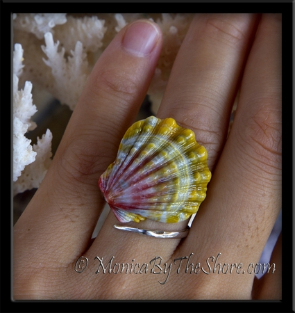 Pink Chartreuse Sunrise Shell Sterling Silver Slant Wrap Ring