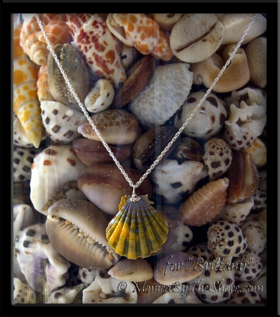 """Custom Rainbow Sunrise Shell Silver Necklace for """"Brittany"""""""
