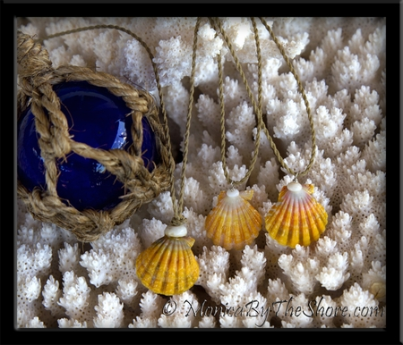 """Colorful """"Country Style"""" Hawaiian Sunrise Shell & Puka Shell Twisted Cord Necklace"""