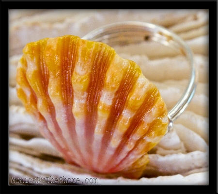 Classic Pink & Yellow Sunrise Shell & Silver Ring