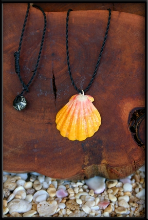 Bright Yellow Pink White Sunrise Shell Black Cord Necklace