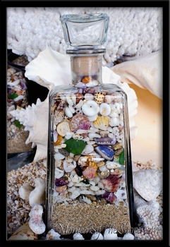 Jose Cuervo 1800 Beach in a Bottle Sunrise Shells & Seashells Hawaii