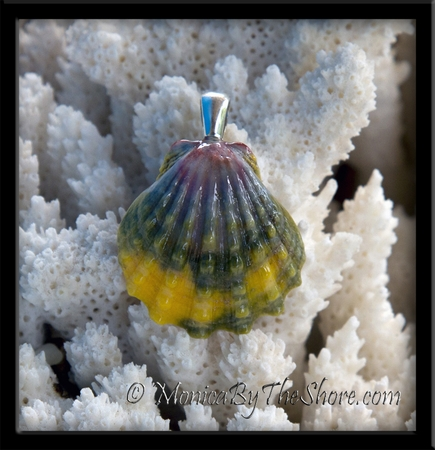 Rainbow Colored Hawaiian Sunrise Shell Pendant with Sterling Silver Bail