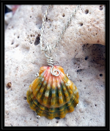 Peach Green Xtra Large Sunrise Shell Silver Necklace