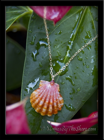 Perfect Pink Hawaiian Sunrise Shell Gold Chain Necklace