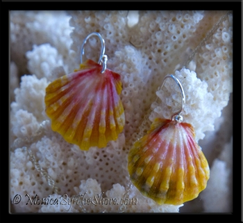 Humble Hawaiian Rainbow Sunrise Shell Silver Earrings