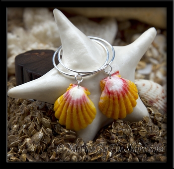 Classic Hawaiian Sunrise Shells Silver Endless Hoop Earrings