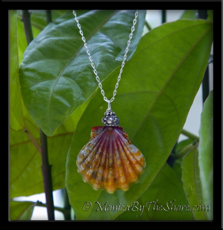 Multicolor Hawaiian Sunrise Shell Sterling Silver Cable Chain Necklace