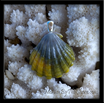 Blue Green & Gold Sunrise Shell Pendant with Silver